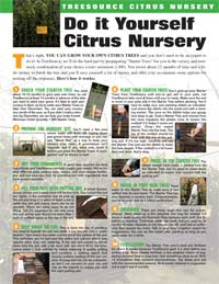 Do-It-Yourself-Citrus-Nursery-1