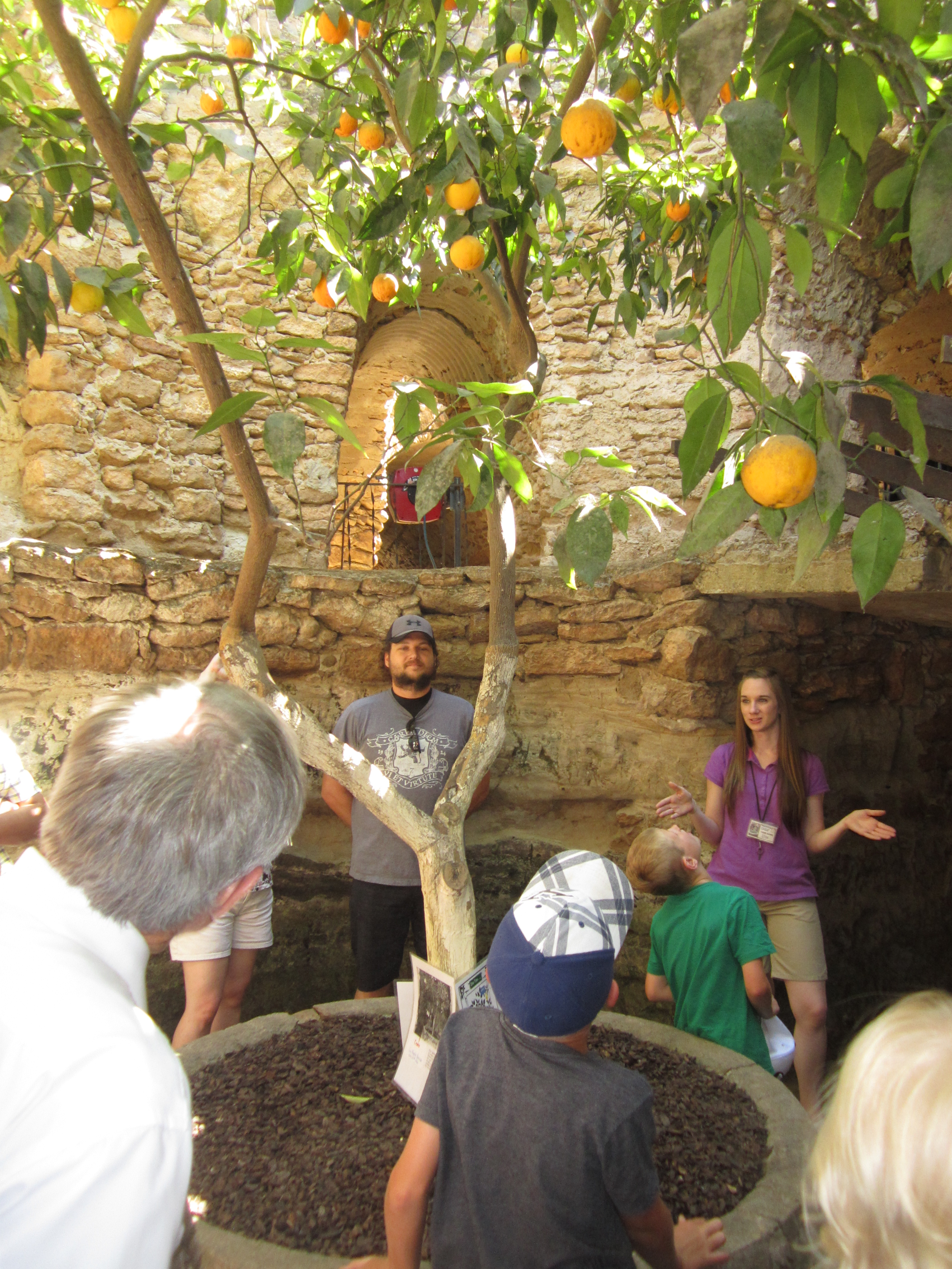The Magic of the Forestiere Undergound Gardens: a sustainable ...