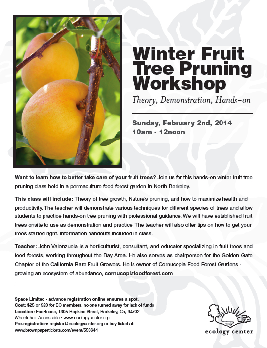 Fruit tree pruning EcoHouse 2-2-12